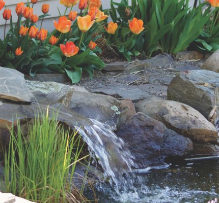 The benefits of water features in garden landscapes